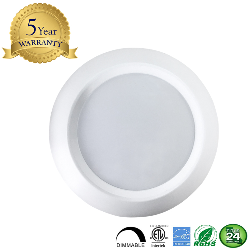 Worbest Lighting  11W LED Disk Light Down Light